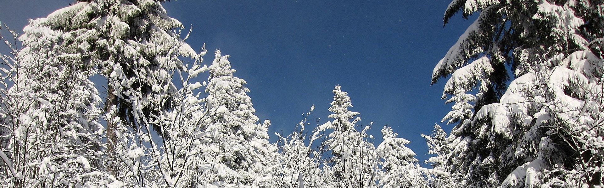 Winterlandschaft Oberwiesenthal